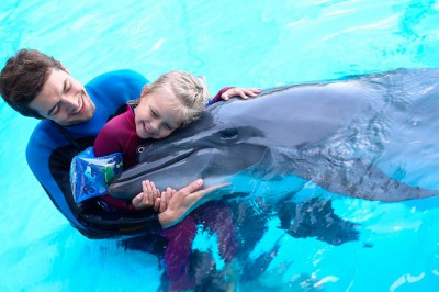 Дельфинотерапия лечит нервные расстройства