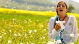 Лечение поллиноза методом биорезонансной терапии